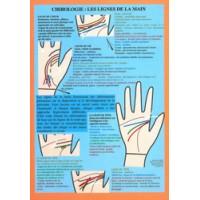 Chirologie les lignes de la mains (planche)
