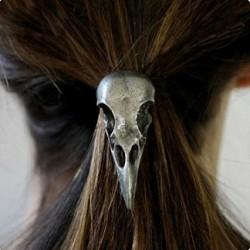 Elastique corbeau